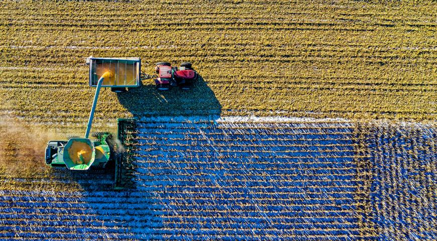 Fideicomisos agrícolas y productivos